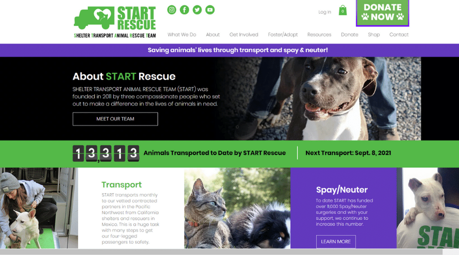 Saving Homeless Animals in Southern California Through Transports and Spay/Neuter | START Rescue