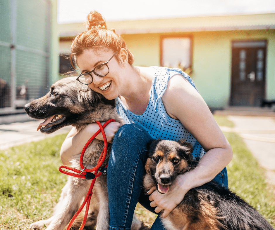 animal shelter volunteer with dogs